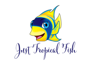 Just Tropical Fish